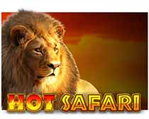Hot Safari