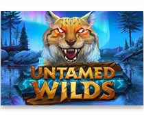 Untamed Wilds