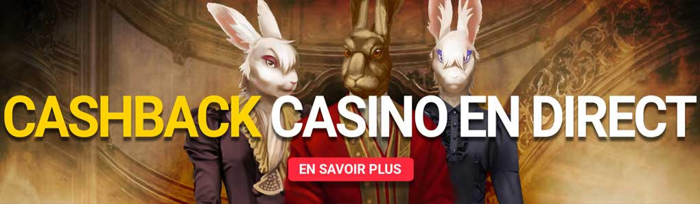 Cashback casino en direct Royal Rabbit